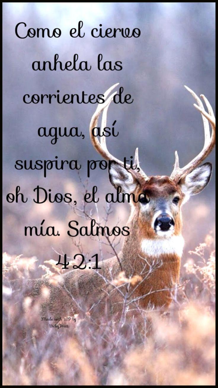 Salmo 42:1 Como el ciervo brama por las corrientes de las aguas, Así clama por ti, oh Dios, el alma mía. ♔