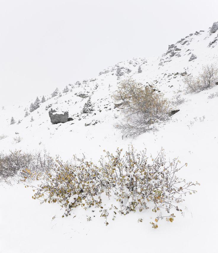 Galería - Antoine / BUREAU A - 15