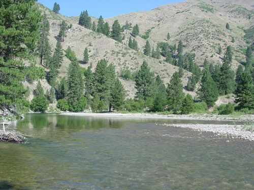 43 best images about idaho fly fishing on pinterest for Boise river fishing