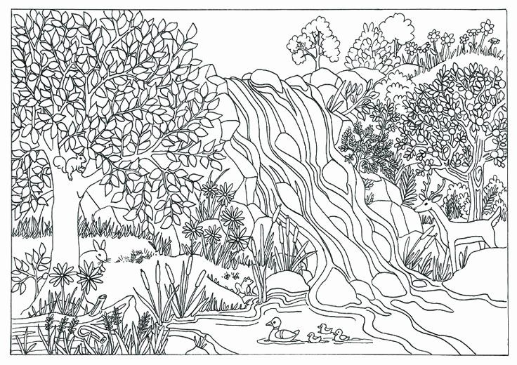 Nature Coloring Books for Adults Beautiful Printable ...