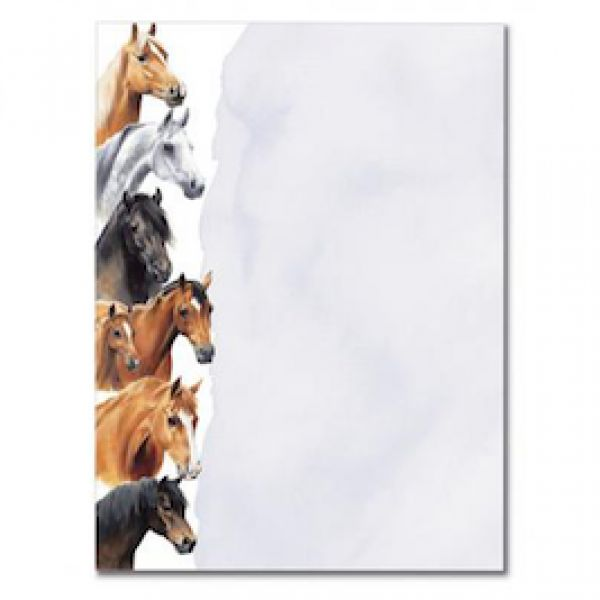 Horses by Caroline A5 pad - Stationery