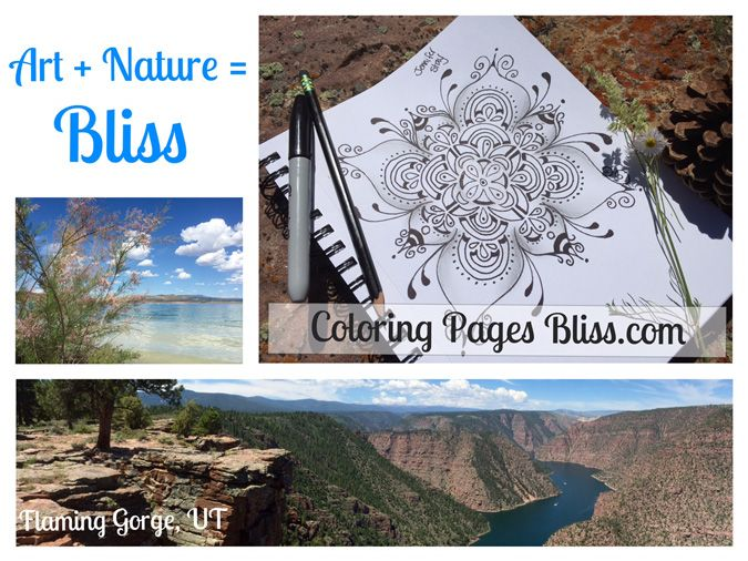 Free Coloring Pages For Adults Bliss Illustrator Jennifer Has Been Drawing At Flaming