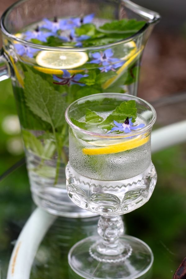 Lemon balm, borage and lemon slices are lovely and refreshing in sparkling water. Pretty glass, too.