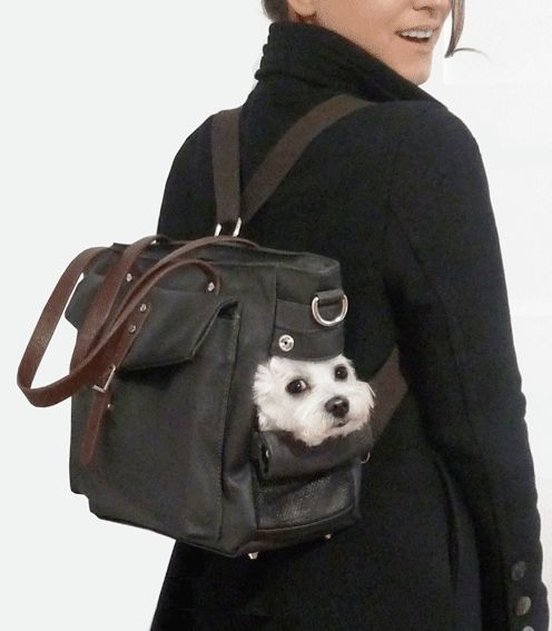 Mochila para perros | Bolso para Perro | Bolsa Para Cachorros | Bolso para perros pequeños- MICRO POOCH™