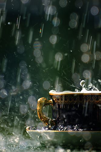 I LOVE this picture!  The raindrops, the movement, the delicate china, the greens....lovely