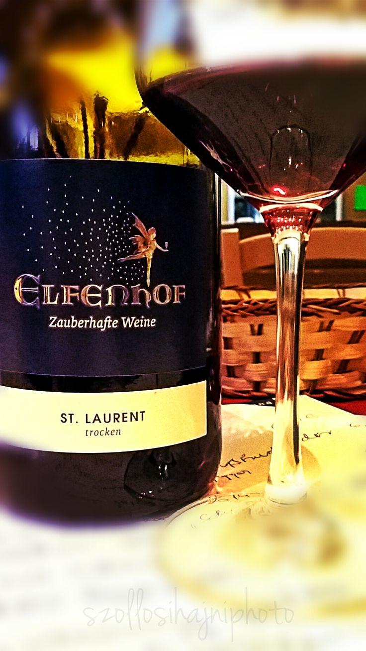Elfenhof Winery / Austria