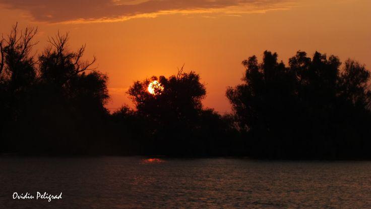 Rasarit de Soare in Delta