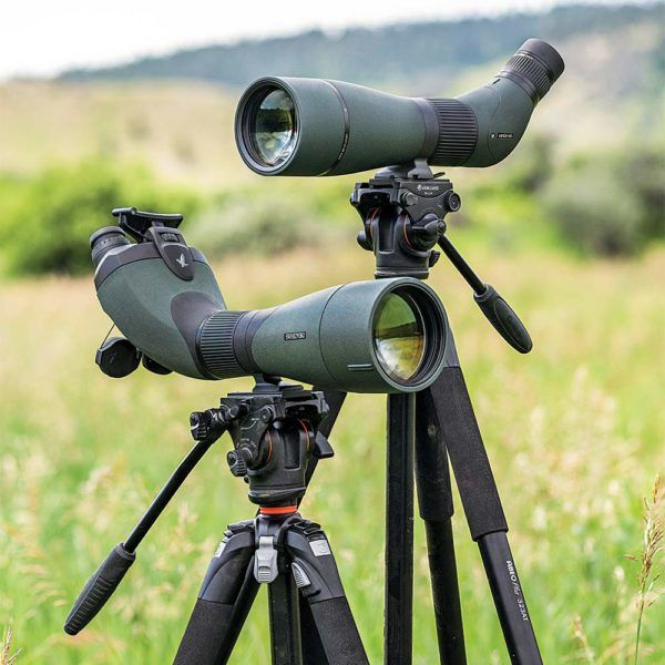 7 Best Spotting Scopes Under 200 Our Top Budget Options In 2020 Spotting Scopes Scopes Ar Scopes