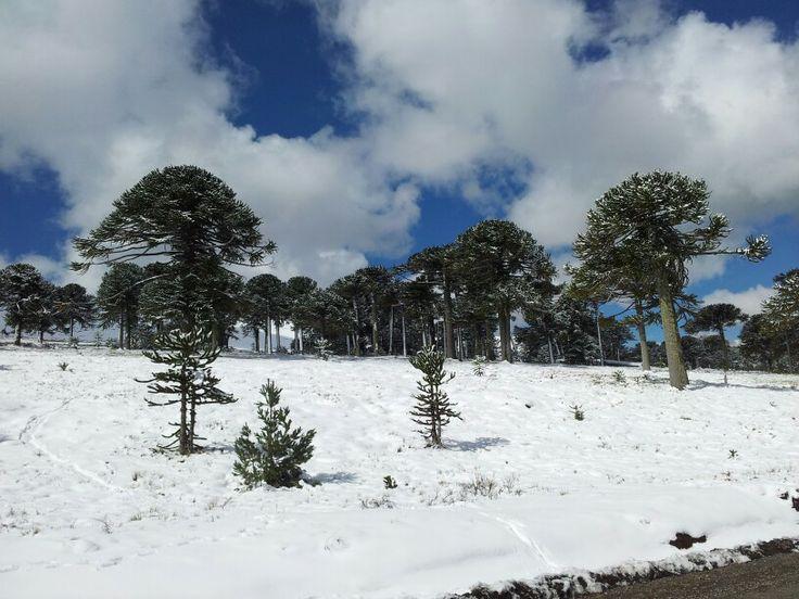 Corralco, Chile