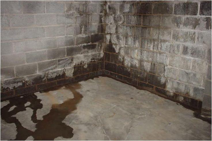 Water Proofing Basement Basement Waterproofing Costs from Wet Basement Repairs