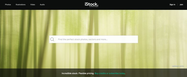 iStock large search box.