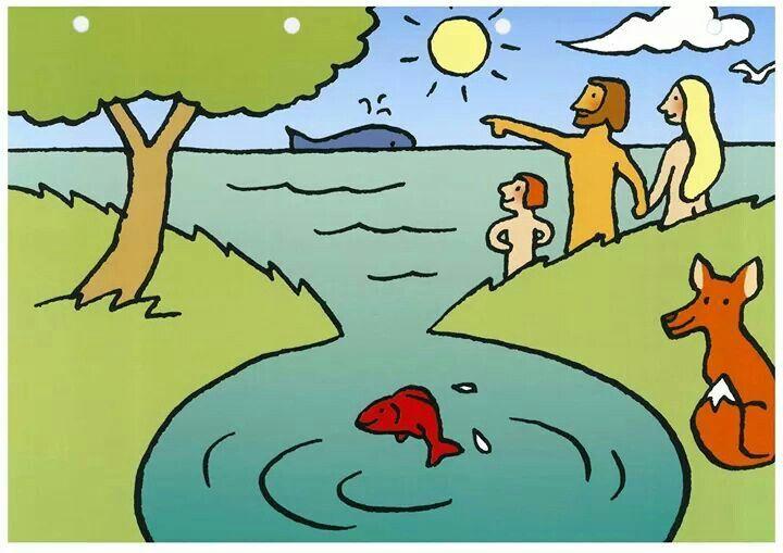 Het scheppingsverhaal: averbode
