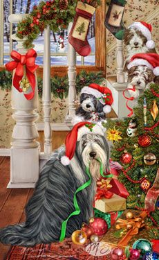 "Bearded Collie Christmas Cards are 8 1/2"" x 5 1/2"" and come in packages of 12 cards. One design per package. All designs include envelopes, your personal message, and choice of greeting.  Select the greeting of your choice from the drop-down menu above.Add your personal message to the Comments box during checkout."