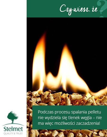 Podczas procesu spalania pelletu nie wydziela się tlenek węgla - nie ma więc możliwości zaczadzenia!