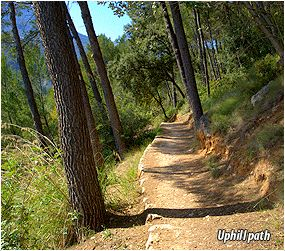 The old path of Port de Sóller - hiking in Tramuntana Mountains
