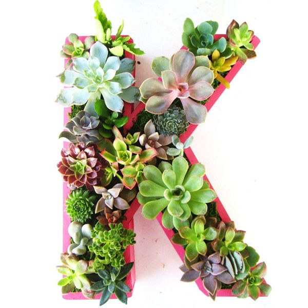 Monogram #Succulent Planter Box