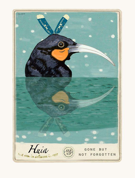 Huia, extinct NZ native bird, immortalised in a gorgeous print