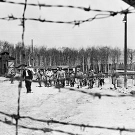 the atrocities that happened at auschwitz camp Le camp de concentration en tant que site de « dark tourism »  and the  interested public to visit the sites of the atrocities committed in concentration,   majority of visitors will have no personal connection to the events that happened  there.