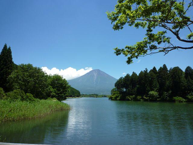 富士山朝霧高原「田貫湖キャンプ場」http://tanukiko.com/
