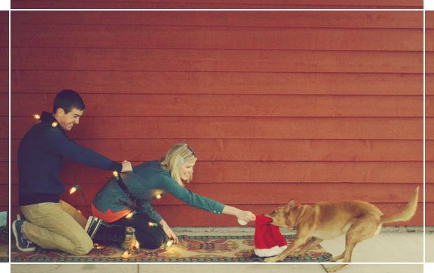 5 Tips for Traveling with Dogs these Holidays | Dog Travel Tips | Pretty Fluffy
