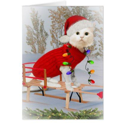 Merry Christmas To All Cat Lovers Card - Xmas ChristmasEve Christmas Eve Christmas merry xmas family kids gifts holidays Santa