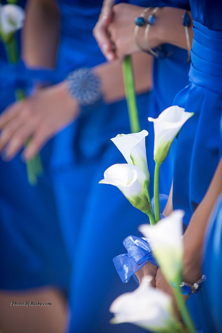 263 best Blue Beach Wedding images on Pinterest | Beach weddings ...