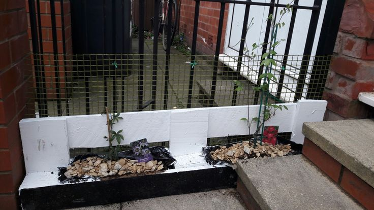 Planter made from pallet  for clematis and passionflower plants to climb on the yard fence