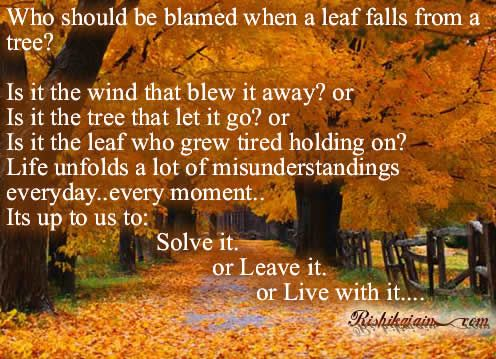 Who should be blamed when a leaf falls from a tree? Is it the wind that blew away? or Is it the tree that let it go? or Is it the leaf who grew tired holding on? . . . . . Life unfolds a lot of misunderstandings everyday ...every moment... I'ts up to us to:  ...Solve it, or Leave it or Live with it...