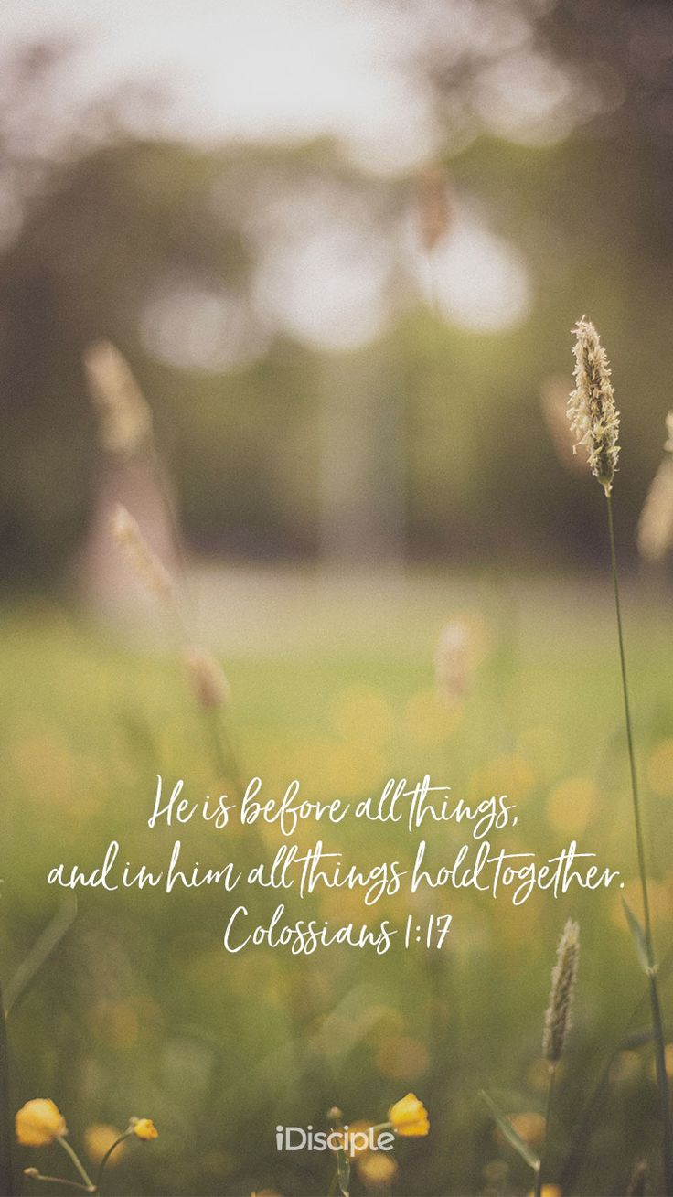 He is before all things, and in him all things hold together. | Colossians 1:17