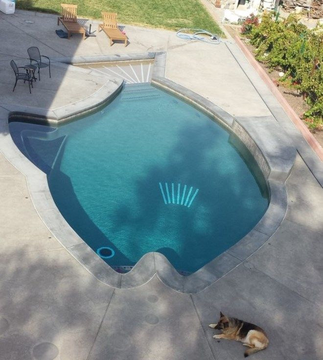 Cement deck around the fish-shaped pool - Decoist