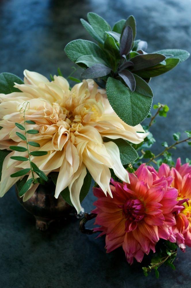 10 Best Images About Silk Dahlia On Pinterest Pedestal Black Backgrounds And Dahlias