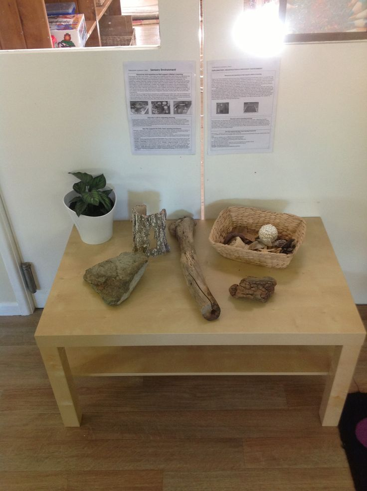 Nature table and sensory experience