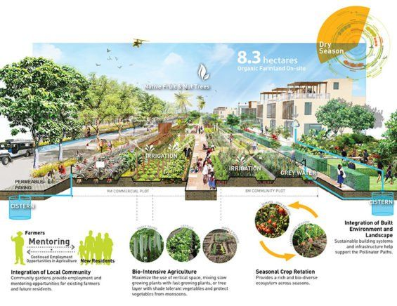 17 best images about renderings section designs on for Filipino landscape architects