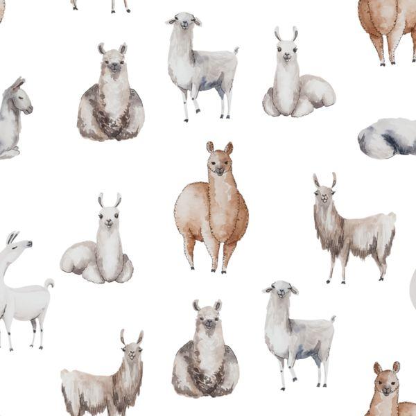 Llama Wallpaper: 25+ Best Ideas About Llama Wallpaper On Pinterest