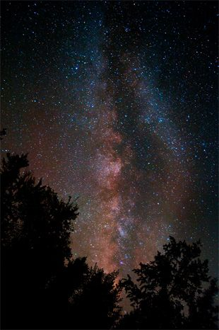 Star Photography Tips- So need to do this some day/night.