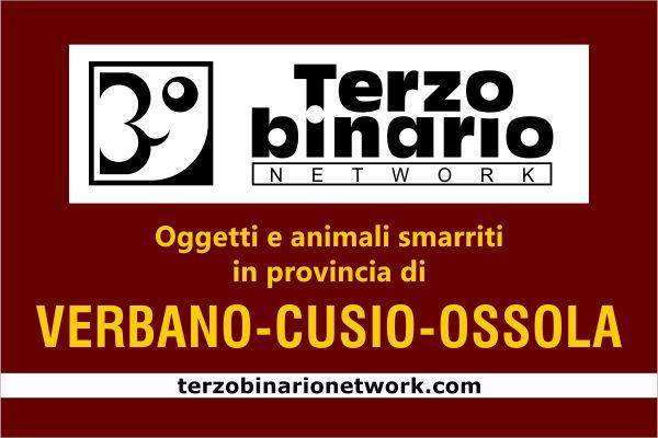 Oggetti e animali smarriti in provincia di Verbano-Cusio-Ossola