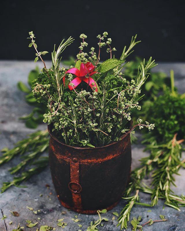 How about  bouquet with aromatic herbs?  сегодня в #марафонфудфото2_1этап #марафонфудфото2 от @photofoodiemagazine задание ароматный букет из трав. Дорогие участники, подробности моего задания ниже ⬇️