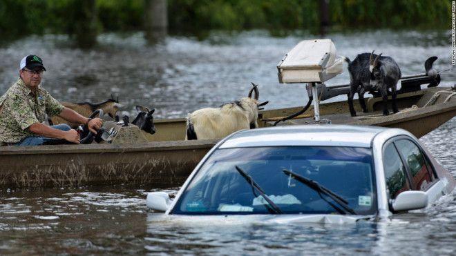 flood 160817142359-08-la-flooding-0816-super-169....la flood manmade! (no kidding)