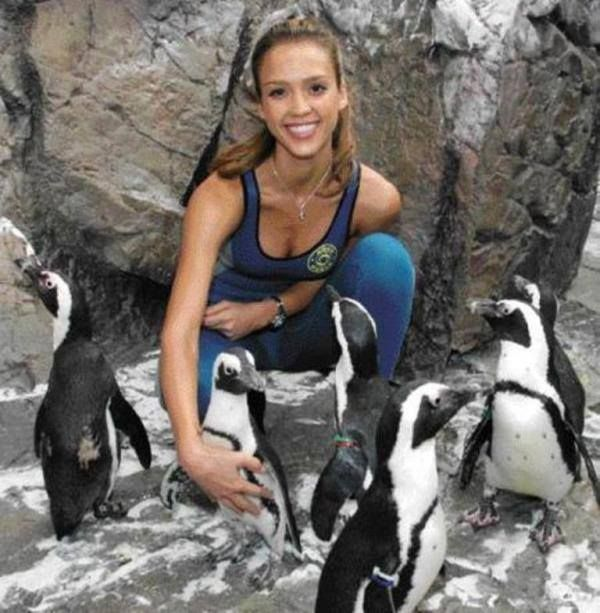 Heres Jess when she was filming scenes for Good luck Chuck with a few friends in the malls penguin habitat. Patagonia, Argentina