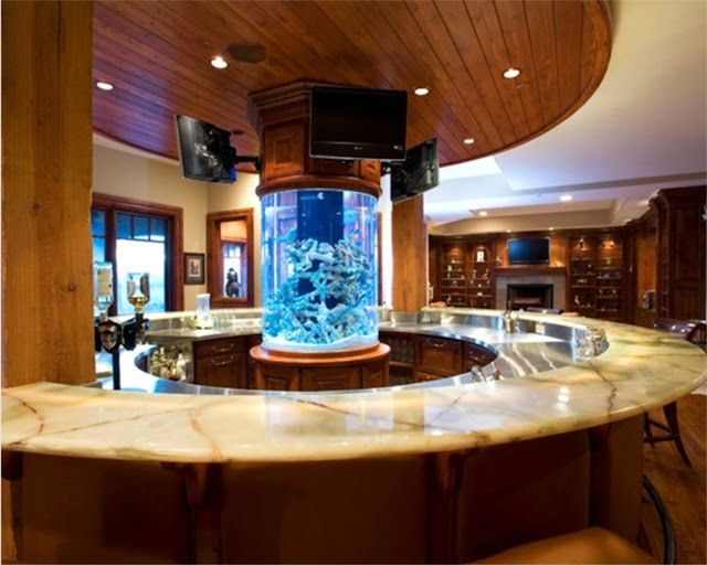 Kitchen Island Fish Tank lovely aquarium setting in a circular kitchen island! astonishing