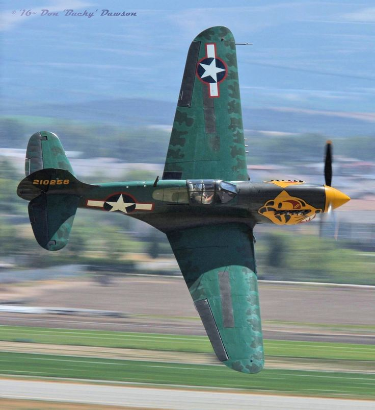 """""""Tiger~On-The-Loose"""", Planes of Fame Airshow-Chino, CA: Pilot *Bernie Vasquez* executes a splendid low-level banana-pass over Chino's historic Cal-Aero Field. Curtiss P-40K-10-CU Warhawk."""