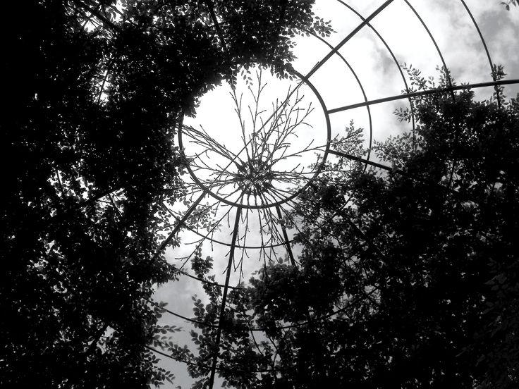 Alnwick Gardens, Northumberland.