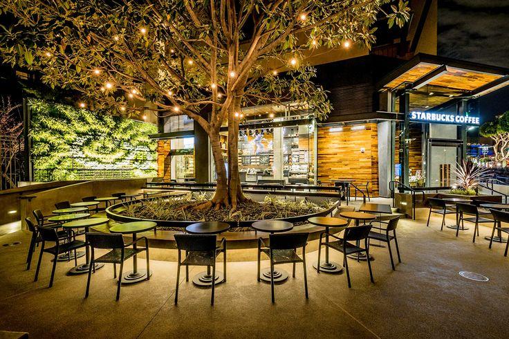 Façon forêt à Disneyland : Les plus beaux cafés Starbucks du monde - JDN