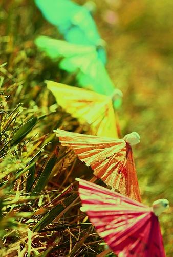 Rainbow Drink Umbrellas #umbrella