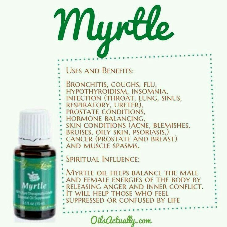 12 Best Images About Myrtle Young Living On Pinterest Of
