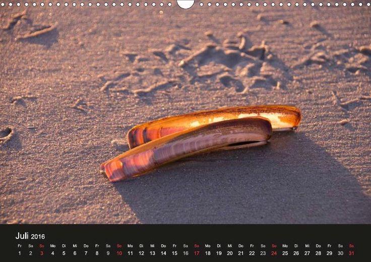 Juist Nordsee Fotografie Kalender Juistrausch 2016 Juli - CALVENDO #juistrausch #juist #töwerland #zauberland #strand #beach #muschel #sonnenuntergang #sundown #nordsee #kalender #juli