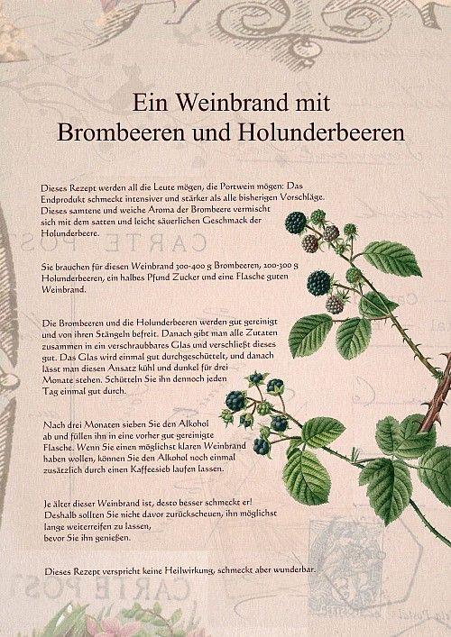 Weinbrand Brombeere-Holunder