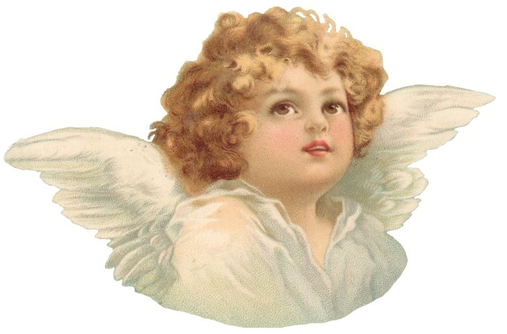 Wings of Whimsy: Cherub Torso 2 PNG (transparent background) - free for personal use #vintage #ephemera #printable