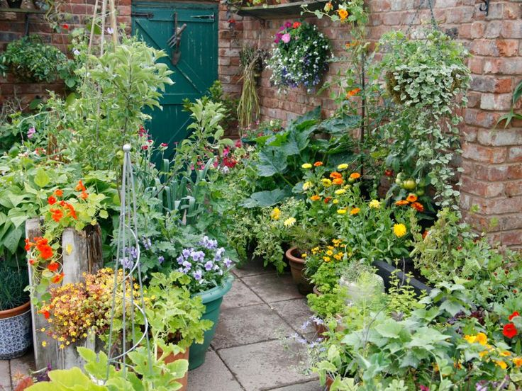 mixing heights colors and textures can produce a vibrant patio flower and vegetable garden here a variety of plants are potted in decorative containers