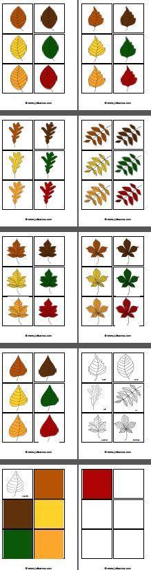 Het bladersorteerspel met bijzonder veel mogelijkheden.